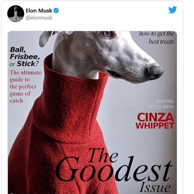 Elon Musk Doge Magazine - Blackwell Global