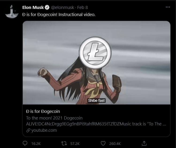 Elon Musk Dogecoin instructional video